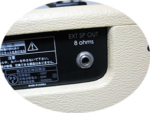 Greco GVA Customのスピーカーアウト端子